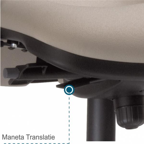 Translatie in Mecanism